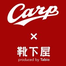 carp_icon